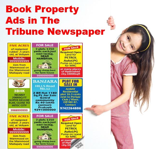 Tribune-Property-Advertisement